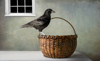 Basket With Crow